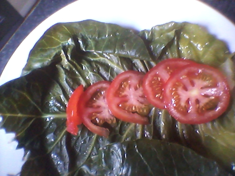 Almost raw vegetable roll ups